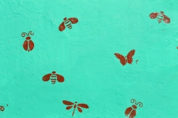 Someone painted dragonflies and ladybugs on the walls