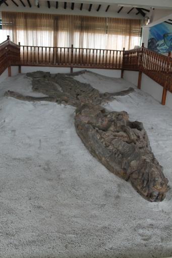 El Fosil