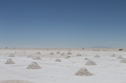 Piles of salt draining off water