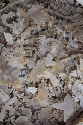 Shell images to be used in wood carving